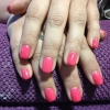 Pink Flamingo Colour Gel n213